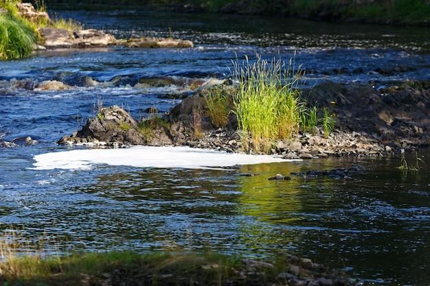 混交林のあるロッキー川岸
