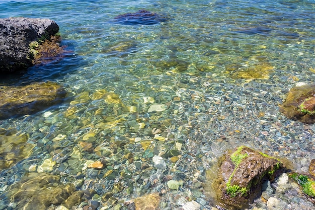 바위가 많은 해저