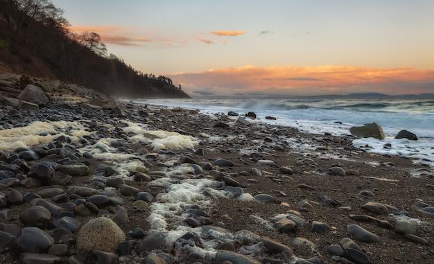 Paesaggio marino roccioso in goose spit park