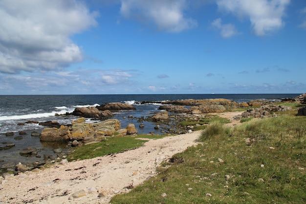 デンマーク、ボーンホルム島のハンマーオッドの夏の日の岩の多い海の風景
