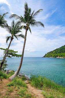 아침에 구름과 코코넛 야자수 프레임 배경 맑고 푸른 하늘 아래 바위 해변 아름 다운 바다와 태국 푸 켓에서 작은 섬.