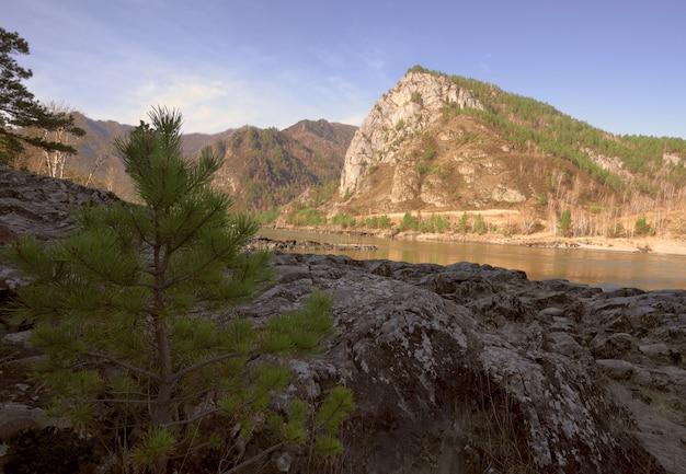 Скалистый берег горной реки высокая скала через реку в солнечном свете