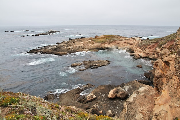 Rocky shore on the west coast of usa