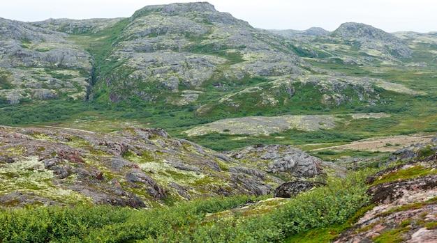 岩だらけの石の海岸バレンツ海、苔や地衣類が生い茂っています。