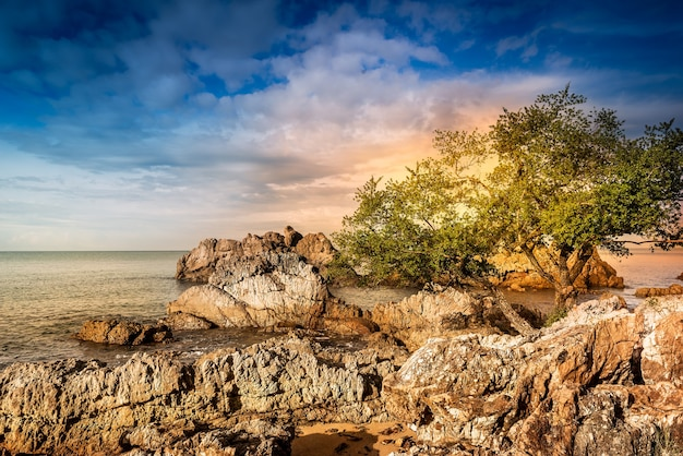 Скалистая зона на красивом побережье во время заката