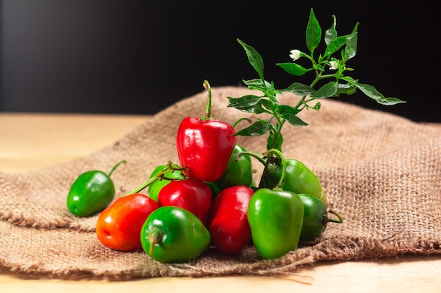 나무 테이블에 rocoto manzano rojo 칠리 고추 고추 pubescens