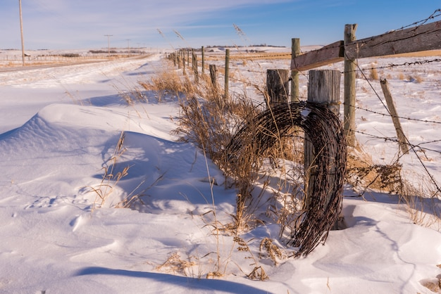 Roll of barbed wire partly covered in the snow with a fencepost
