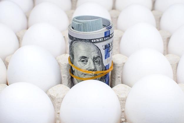 鶏卵と卵トレイで百ドル札のロール