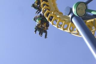 Roller coaster, activity