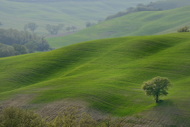 Rolling hills countryside
