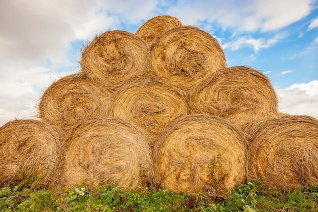 Рулоны сена сложены