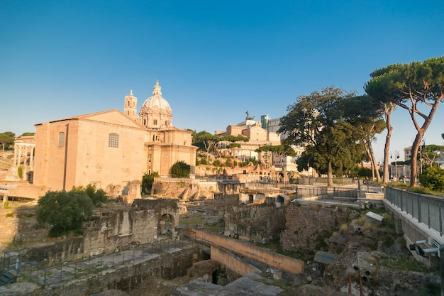 Roman forum in summer morning rome italy