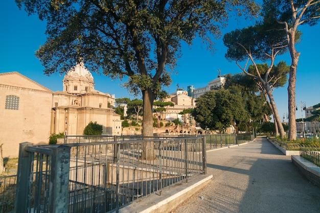 Roman forum in summer morning, rome, italy