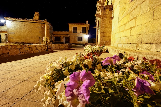 밤에 꽃이 가득한 화분이 있는 로마네스크 양식의 교회.