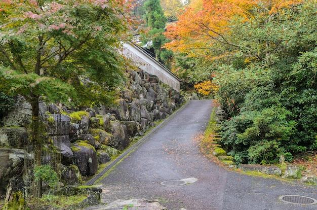 日本の宮島のイロハモミジとロマンチックな秋の道