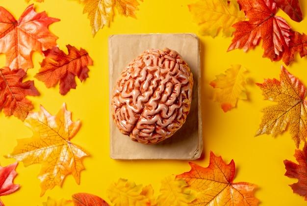 Романтическая книга и человеческий мозг с осенними листьями на желтом фоне. вид сверху