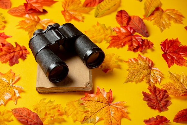 Romantic book and binoculars with autumn leaves on yellow background. top view