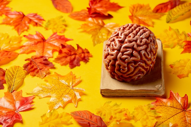 Romantic book and human brain with autumn leaves on yellow background. top view