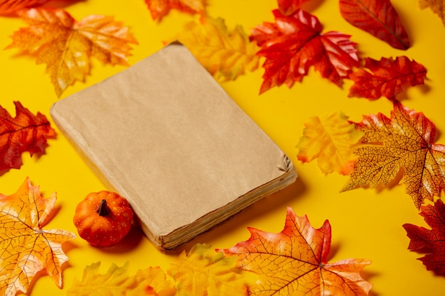 Romantic book and pumpkin with autumn leaves on yellow background. top view