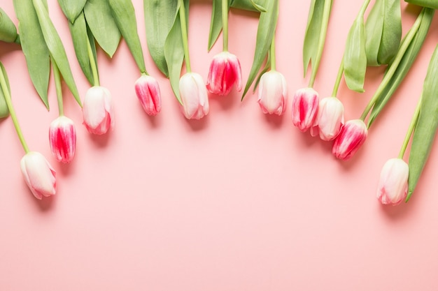 Romantic bouquet of pink tulips, spring greeting card with copy space.