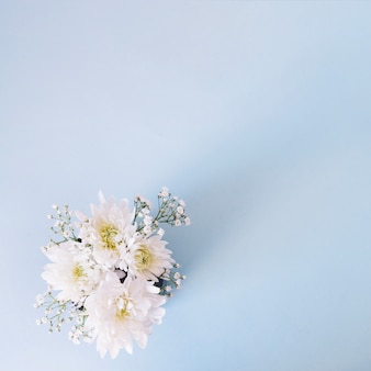 Romantic composition of gentle flowers on blue