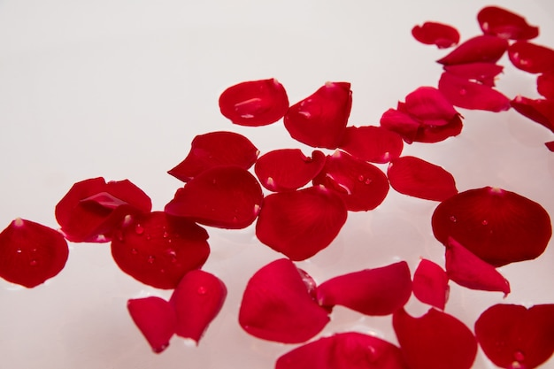 Romantic luxury, valentines day rose petal in bath water, home spa, self care surprise