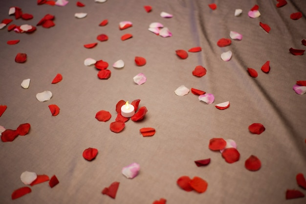 Romantic room setting with rose petals filled bed and pillows sensual silk honeymoon valentines day