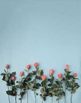 Романтическая весенняя цветочная композиция с розовыми розами на пастельно-синем фоне. минимальная концепция. плоская планировка.