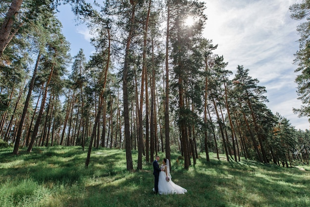 Romantic wedding moment. happy young wedding couple outdoors in the park looking each other. emotional bride and groom portrait outdoors  in sunny day.  just merried. wedding day
