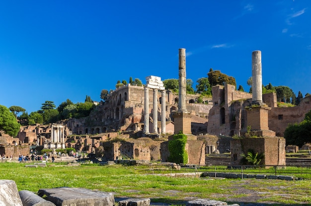 Rome: ruins of the forum