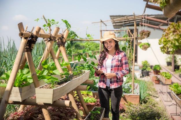 Ферма на крыше или сад