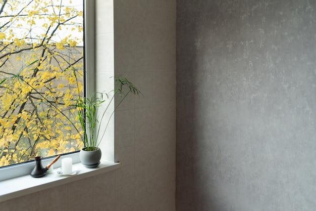 밝은 색상의 방 디자인. 냄비에 방, 창 및 꽃의 코너. 빈 공간