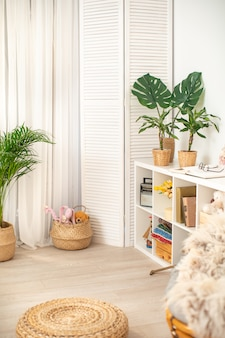 The room is in bright colors with green plants. cozy corner for rest