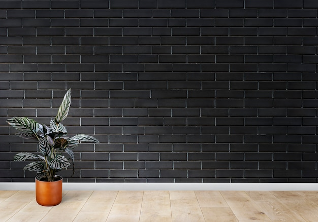 Room with a black brick wall