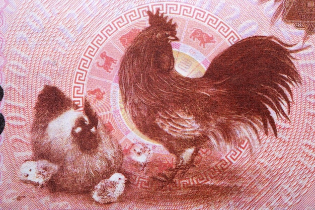 Rooster from chinese money
