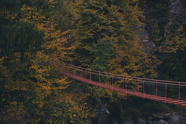 Rope ladder in the mountains