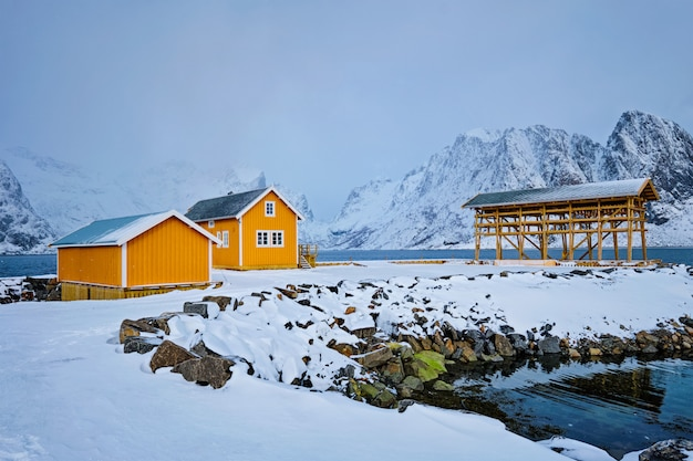 Rorbu house and drying flakes for stockfish cod fish in winter. lofoten islands, norway
