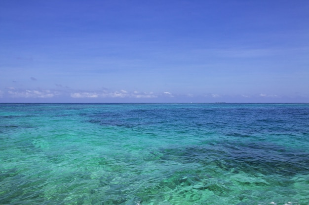 コロンビアのカルタヘナに近いカリブ海のロザリオ自然保護区