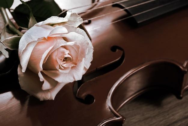 ローズとバイオリンのクローズアップクリームローズとヴィンテージバイオリンのメロディーのコンセプト