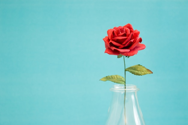 Rose on blue background with copy space