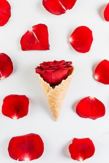 Rose bud in waffle cone on table