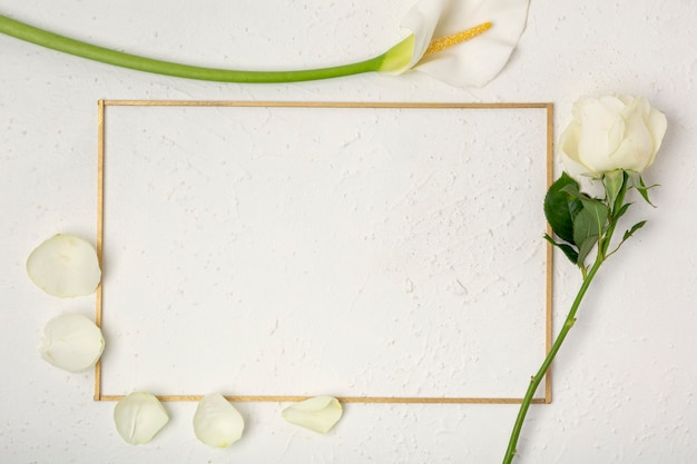 Rose and calla lily frame with petals