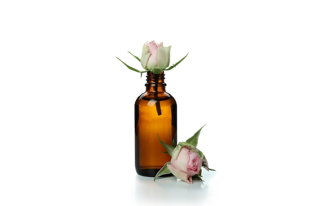 Rose essential oil isolated on white