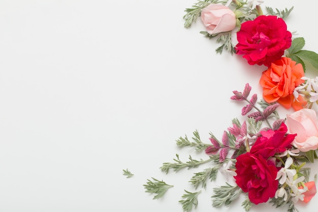 Розовые цветы и листья на белом фоне