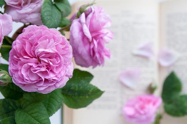 開いた聖書の背景にバラの花