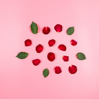 Rose petals and leaves. holiday or romantic present concept, square image