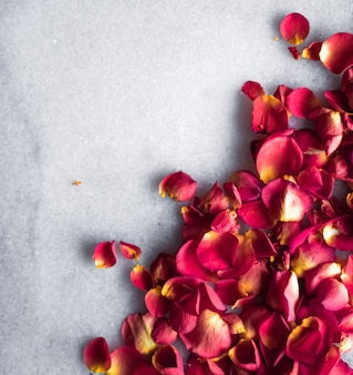 Rose petals on marble background floral decor and wedding flatlay holiday greeting card backdrop for event invitation flat lay design