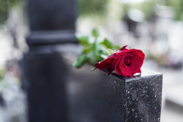 Rose on tombstone.