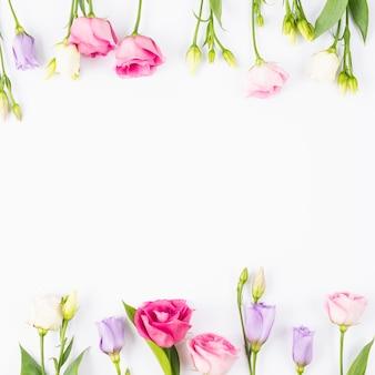 Rose and violet flowers frame