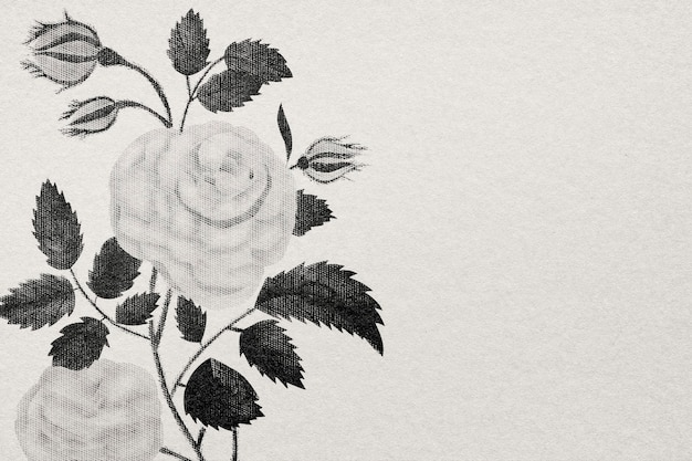 Роза обои с гравировкой рисованной цветок в чб